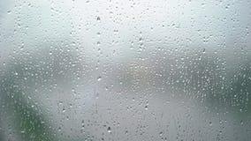 Gotas de agua en la ventana almacen de video