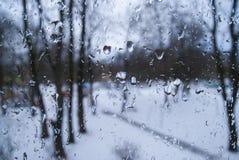 Gotas de agua en la ventana el fondo de los árboles fotos de archivo