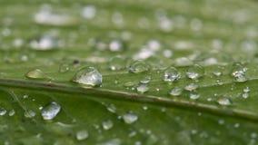 Gotas de agua extendidas por fotos de archivo