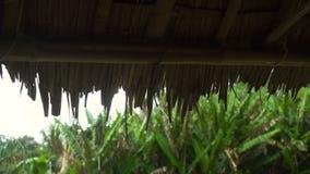 Gotas de agua que caen del tejado almacen de metraje de vídeo
