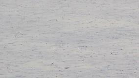Gotas de la lluvia en el río metrajes