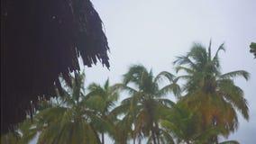 Gotas de la lluvia tropical que bajan de las casas de planta baja almacen de metraje de vídeo