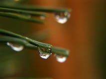 Gotas de lluvia Foto de archivo
