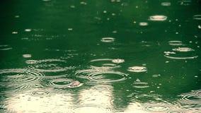 Gotas de lluvia en la superficie del agua almacen de metraje de vídeo