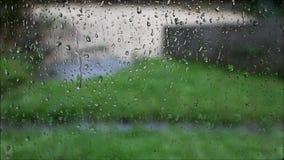 Gotas de lluvia y del agua almacen de video