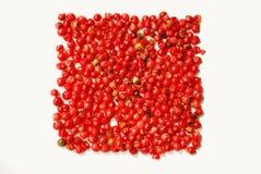 Gotas de pimienta roja Foto de archivo