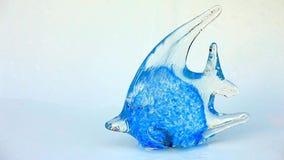 Gotas de vidro azuis da água fresca dos peixes filme
