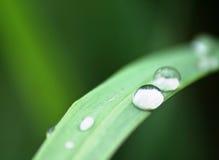Gotas del agua Fotografía de archivo