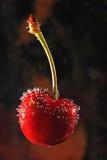 Gotas del agua en cereza roja Foto de archivo