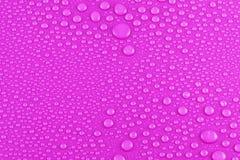 Gotas del agua en color de rosa Imágenes de archivo libres de regalías