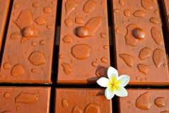 Gotas del agua y de la flor en el suelo de madera Foto de archivo