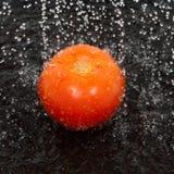 Gotas del tomate y del agua Fotografía de archivo libre de regalías
