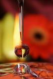 Gotas do amor. fotografia de stock