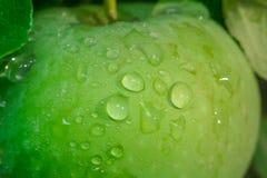 Gotas do close-up de Apple fotos de stock