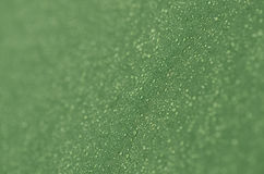 Gotas do orvalho na tela verde Imagem de Stock