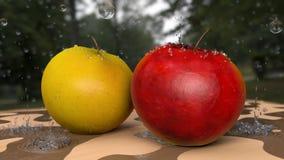 Gotas e uma maçã Imagem de Stock
