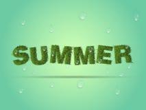 Gotas frescas do fundo, da grama e da água do verão Foto de Stock Royalty Free