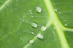 Gotas macro da água Fotografia de Stock