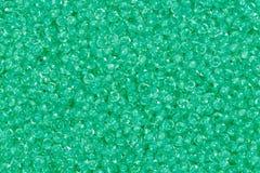 Gotas medias de la semilla del verde de la primavera fotos de archivo libres de regalías