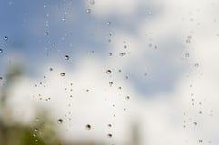 Gotas na janela Imagem de Stock