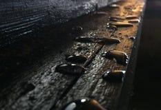 Gotas na madeira Foto de Stock