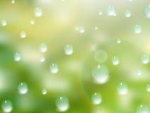 Gotas naturales del agua sobre el vidrio EPS10 más Imagen de archivo libre de regalías