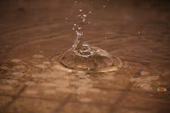 Gotas perfeitas da água de chuva Fotografia de Stock Royalty Free