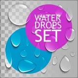 Gotas puras da água ajustadas Fotografia de Stock Royalty Free