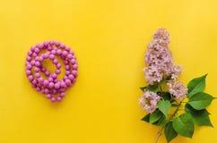 Gotas y flores del árbol de la lila foto de archivo libre de regalías