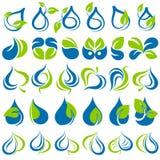 Gotas y hojas. Fotografía de archivo libre de regalías