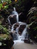 Gotee la cascada con efecto sedoso del flujo, jardín tropical de la especia, Penang, Malasia Fotografía de archivo