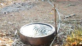 Gotejamento da fonte de água do torneira ao tanque do cimento video estoque
