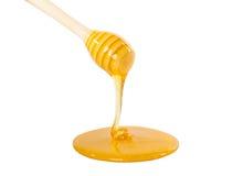 Gotejamento do mel fotografia de stock