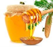 Gotejamento do mel Imagens de Stock Royalty Free