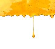 Gotejamento do mel foto de stock