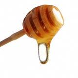 Gotejamento do mel de um dipper de madeira Imagens de Stock Royalty Free