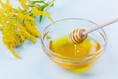 Gotejamento do mel de um dipper de madeira do mel na bacia de vidro em um fundo azul Fotografia de Stock Royalty Free