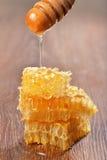 Gotejamento do mel nos favos de mel Foto de Stock Royalty Free