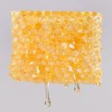 Gotejamento nos favos de mel, fim do mel acima Imagens de Stock