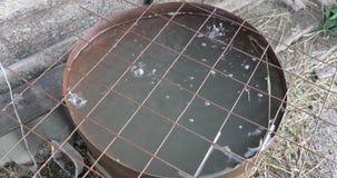 Gotejamentos da água em um tambor velho e sujo video estoque