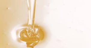 Gotejamentos do mel do dipper de madeira Imagens de Stock