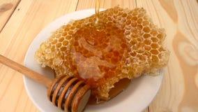 Goteo de la miel del cazo de la miel en el panal, sobre fondo amarillo Cámara lenta almacen de video