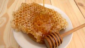 Goteo de la miel del cazo de la miel en el panal, sobre fondo amarillo Cámara lenta almacen de metraje de vídeo