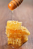 Goteo de la miel en los panales Foto de archivo libre de regalías