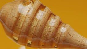 Goteo de la miel en un cuenco por completo de miel almacen de metraje de vídeo