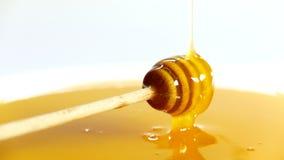 Goteo de la miel en un cuenco por completo de miel almacen de video