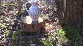 Goteo de la savia del árbol de abedul en un jarro decorativo metrajes