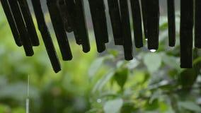 Goteo del agua de lluvia almacen de metraje de vídeo
