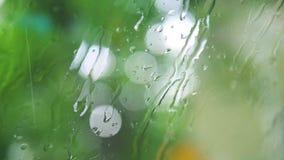 Goteo sobre un vidrio, cierre de la lluvia ligera para arriba, fondo natural borroso almacen de video