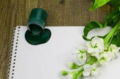 Goteo verde en blanco, flor blanco hermoso de la pintura Fotos de archivo libres de regalías
